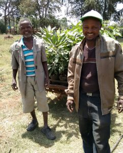 GreenPath partner farmer buying avocado seedlings.